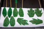Salami leaves